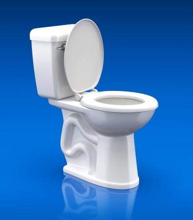 toilet: Toilet bowl