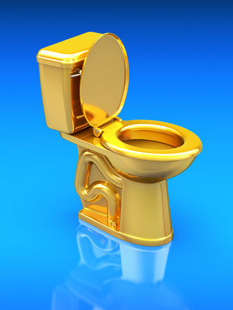 Golden toilet bowl photo