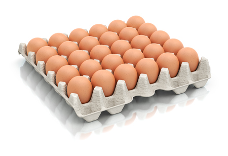 brown egg: Thirty eggs in a carton package - 3D illustration