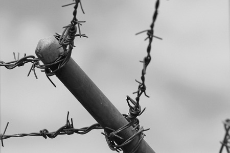 barb wire: Barb wire at detention center