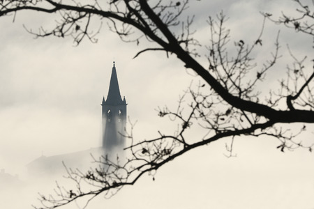 church steeple: View of church steeple peeking out of winter fog with tree branches in the foreground