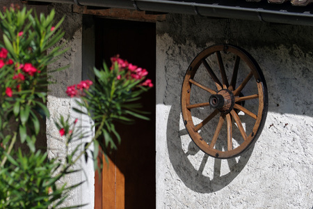 Rural wall and entrance with wooden wheel decoration and blooming oleander