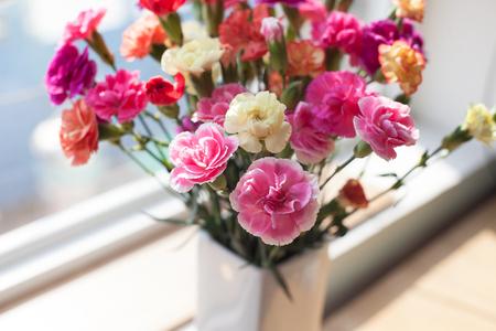 Indoor flower on the windowsill. white vase, pot. curtains tulle Stock Photo