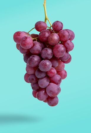 Bunch of red grapes isolated on blue background