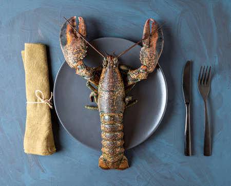 Fresh lobster with cutlery and napkin, concept of luxury, gourmet, quality fresh seafood