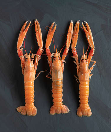three fresh Norway lobsters on rustic background