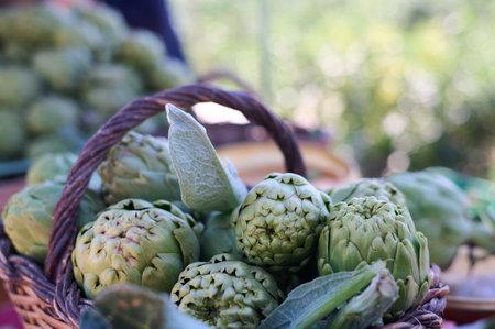 Fresh artichokes at farmers markets