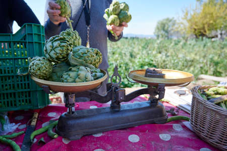 Weighing artichokes at farmers market