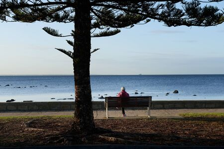 A woman wearing a head scarf sitting alone on the bench in front of the sea under a pine tree.