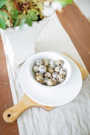 quail: quail eggs on a kitchen table in a white plate