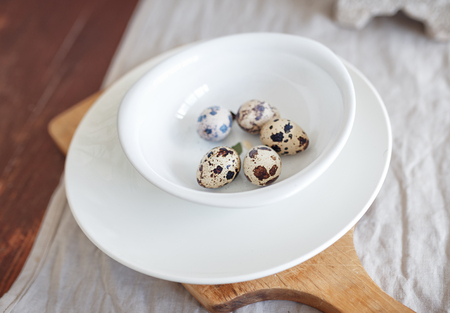 huevos de codorniz: quail eggs on a white plate in the kitchen