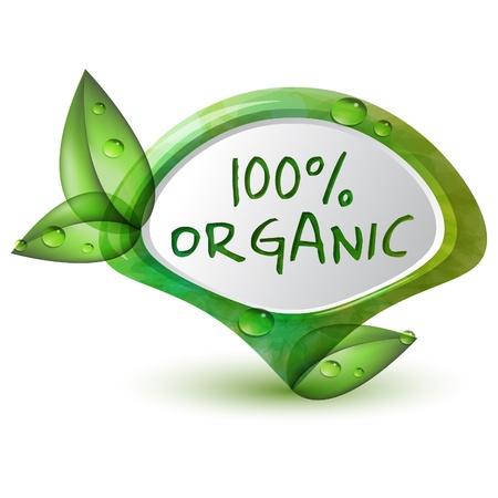 productos naturales: Verde 100% org�nicos puntero con hojas y gotas de agua Vectores