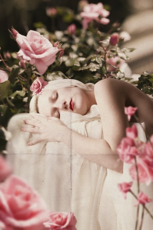 beauty young woman in pink roses, art collage photo