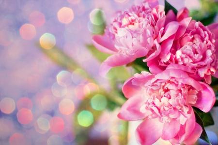 mazzo di fiori: bel mazzo di fiori, peonie rosa