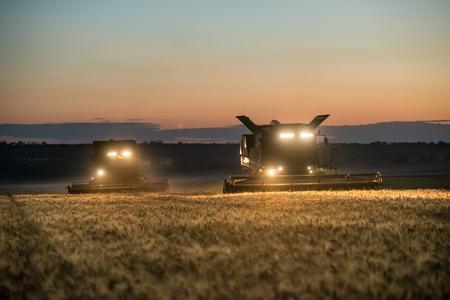 밤에 밀 작물의 수확기 작업을 결합 스톡 콘텐츠