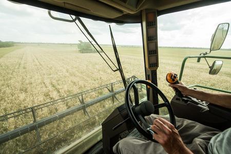 Farmer at steering wheel of sombine harvester on a wheat field Standard-Bild
