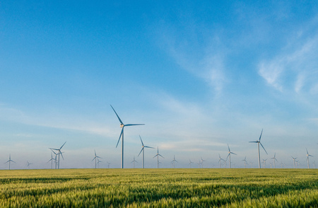 Group of windmills for electric power production in the green field of wheat