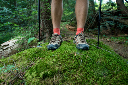 legs of the traveler in hiking boots with trekking poles in the forest
