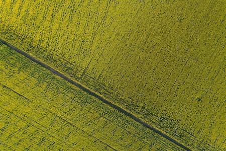 The scenic dirt road through a farm field. Aerial view.
