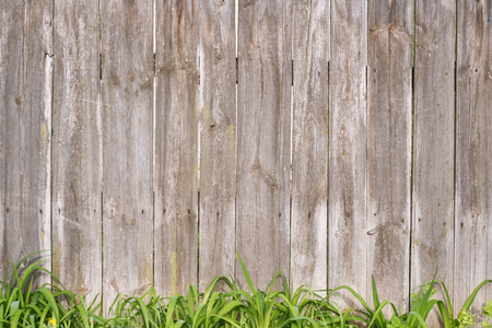 Wooden fence with grass. Vintage texture Background. Фото со стока