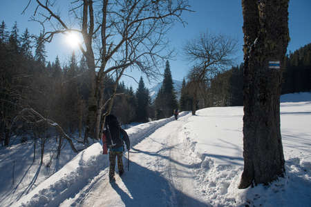 Two travelers with an ice ax and a backpacks walks a snowy mountain road in forest Standard-Bild