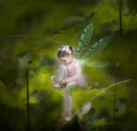 Little fairy between the leafs photo