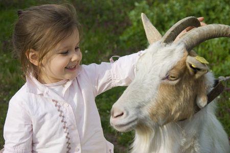 cabra: En la granja con la cabra Foto de archivo