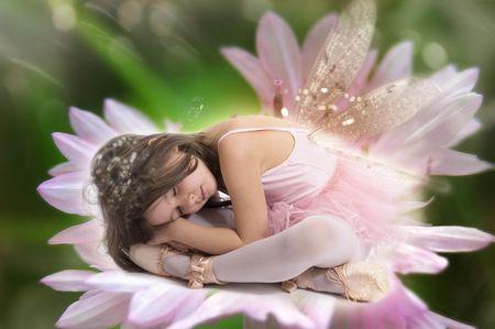 magic lily: Sleeping fairy