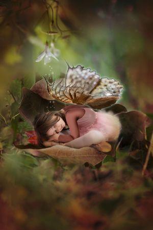 sleeping princess photo
