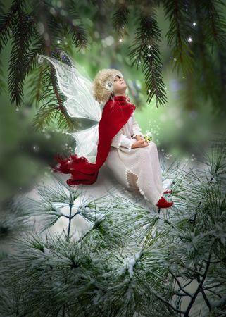 fairy wings: Winter princess
