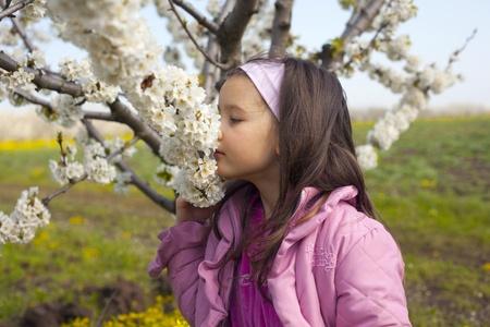 Swett little girl smell blossom cherry branch Stock Photo