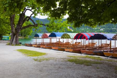 bled: Slovenian lake Bled Stock Photo