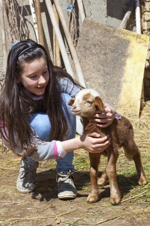 Little girl with baby lamb Stock Photo