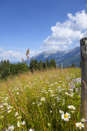 Wilder Kaiser, Tirol, Austria Stock Photo