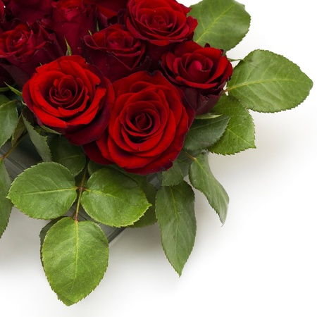 rose bouquet: red roses
