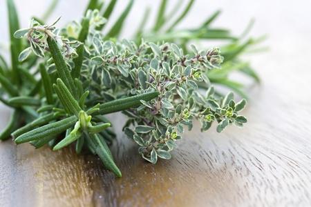 thyme and rosemary - fresh garden herbs