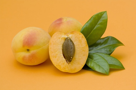 apricots Stock Photo - 12706573
