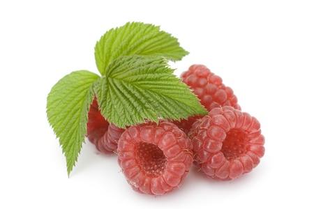 raspberries on white background photo