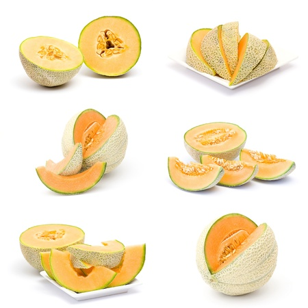 collection of fresh melon fruits photo
