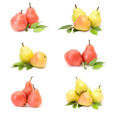 collection of fresh pear fruits photo