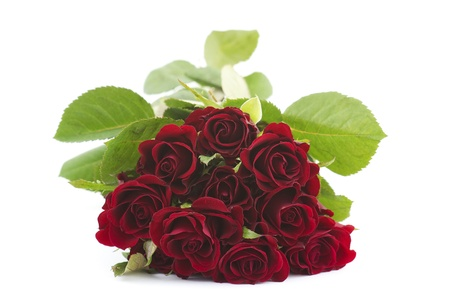 red roses Stock Photo - 12706684