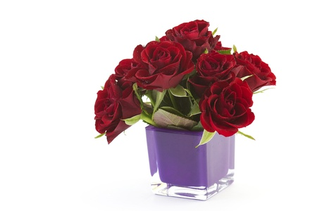 red roses Stock Photo - 12706190
