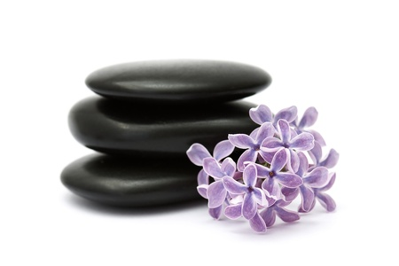 lilac flowers and massage stones Stock Photo - 12887538