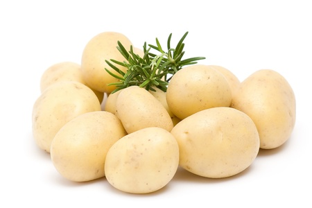 potatoes and fresh rosemary Stock Photo - 13033219