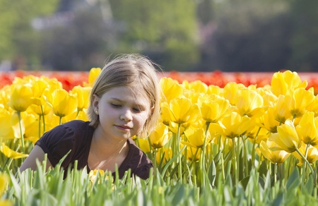 little girl in tulips field  Stock Photo - 13033294