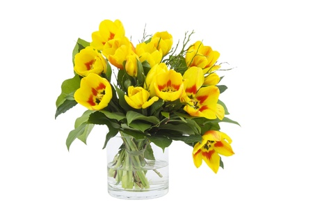 Beautiful yellow tulips in a vase on a white background