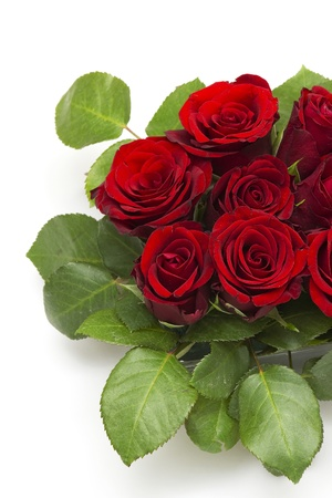 red roses Stock Photo - 13261194