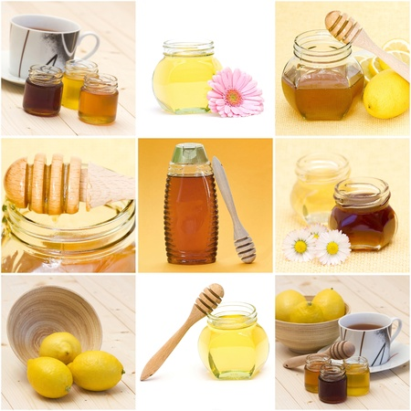 collection of honey photo