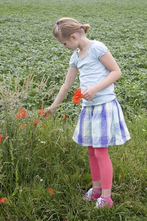 little girl on the meadow with flowers Stock Photo - 13389400