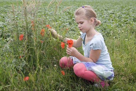 grass skirt: little girl on the meadow with flowers